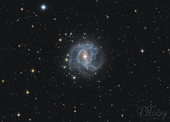 The Southern Pinwheel Galaxy - Messier 83 (Delberson Tiago) Tags: astrophotography astronomy astrofoto astrofotografia astronomia astrophoto amateur cosmos universe universo galaxy galáxias nightsky night nasa nebulae nebulosa nebula qhy optolong telescope telescopio astrometrydotnet:id=nova2754405 astrometrydotnet:status=solved