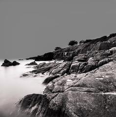 Pont Aven (david zhornski) Tags: hasselblad 503 cw kodak tri x black white film analog argentique monochrome bretagne long exposuse