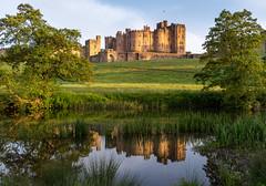 Evening Light (Matthew_Hartley) Tags: alnwick castle river aln evening light golden goldenhour northumberland uk britain coast sony a7 iii a7iii fullframe 2870 2870mm
