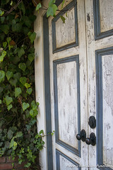 Carmel, CA (adventurousness) Tags: ivy california carmel highway 1 road trip pacific coast door ca highway1 pacificcoasthighway pacificcoast roadtrip carmelbythesea unitedstates us