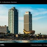 1071_D8C_4177_bis_Barceloneta thumbnail