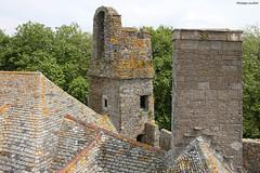 Le château de Pirou vu des toits : la tourelle (philippeguillot21) Tags: châteaufort castel pirou manche cotentin normandie france europe tour tower toit roof pixelistes canon