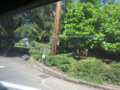 IMG_8370 (Andy E. Nystrom) Tags: bellevue washington wa bellevuewashington