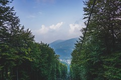 Beskidy. (xoxosandraaa) Tags: poland czantoriawielka goraczantoria czantoria mountains beskidymountains beskidy trees
