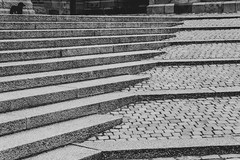 Steps / Playground (nachomaans) Tags: fuji xt20 denmark dk roskilde cathedral domkirke unesco zealand medieval grave gothic brick chapel royal king queen dog stairs steps architecture bw