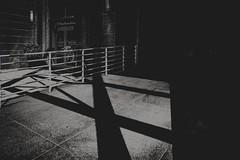 Crisscrossed (Pio Ulises Jasso) Tags: monochrome blackandwhite