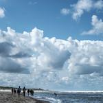 A day at the beach thumbnail