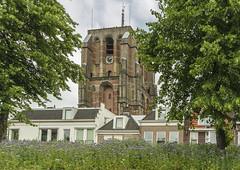 Oldehoven Tower (fotofrysk) Tags: oldehoventower homes architecture trees leeuwardenrondvaart europeancapitalofculture2018 nederlan nederland netherlands friesland fryslan leeuwarden ljouwert sigma1750mmf28exdcoxhs nikond7100 201806035900
