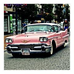 norden (22) (japanese forms) Tags: ©japaneseforms2018 日本フォーム 1957 auto cadillac car detroit norden pink random rosa rose roze square squareformat strasenfotografie straatfotografie streetphotography vlaanderen