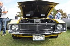 1969 Shelby GT-350 (14) (Gearhead Photos) Tags: packard trucks ferrari 250 gt lusso porsche 356 hot rod street muscle cars mopar crescent beach concours delegance jaguar e type brookland riley alfa romeo mustang shelby camaro ss rs z28 coupe lamborghini countach 308 gts 911 targa mercedes benz 280sl gt350 ford fairlane xl ranchero convertible sunbeam tiger pontiac gto lincoln continental galaxie fiat osca mga austin healey studebaker 3100 fargo bentley special woodie wagon pierce arrow