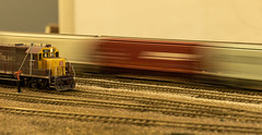 20180908_4825_7D2-70 Passing Amirillo (johnstewartnz) Tags: ho hoscale freemo skillwise modelrailroad modelrailway canonapsc canon7dmarkii 2470 2470mm ef2470mmf4l canonef2470f40l 7dmarkii canoneos7dmkii canoneos7dmarkii 100canon