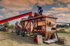 Harvest (3) (JLM62380) Tags: houlle batteuse nostalgie paysan ancien temps combine moisson harvest field champ france rural peasant farmer fermier agriculture