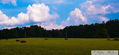Blue skies over hay fields (Tonya Salas) Tags: tennessee marioncounty beautyinnature outdoors haybales hayfields landscapes blueskies clouds