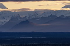 Morning ligth in the Alaska Range (Captures.ch) Tags: wolken clouds tag sunrise sonnenaufgang morgen day morning fall herbst alaska alaskarange denalihighway wald valley tree tal sky mountains landschaft landscape hügel himmel hill berge baum aufnahme capture fog nebel