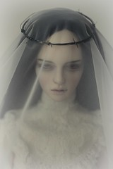 barbed bride (dolls of milena) Tags: bjd abjd resin doll portrait iplehouse harace bride wire barbed