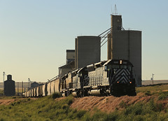 Twain with 45's (GLC 392) Tags: cement ewg eastern washington gateway gate way railway railroad train emd sd45 sd452 sd40t2 wrix 8702 niwx 328 329 ewlx east wa grain golden light road shadows coulee city bins silo shuttle grass sky tree mountain back smoke glint dip evening aftenoon almira looking down tracks town crew locomotive