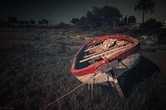 Boats... (hobbit68) Tags: boote fujifilm xt2 boats himmel gras baum tree holiday urlaub spanien sonne spain espanol espagne sonnenschein espana andalusien andalucia hafen puerto port meer atlantik