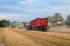 Wheat Harvest | CLAAS // MASSEY FERGUSON // ANNABURGER (martin_king.photo) Tags: harvest harvest2018 ernte 2018harvestseason combineharvester combine harvester new modernmachine summerwork powerfull martin king photo machines strong agricultural great czechrepublic agriculturalmachinery farm working modernagriculture landwirtschaft martinkingphoto moisson machine machinery field huge big sky agriculture power dynastyphotography lukaskralphotocz day fans work place yellow gold golden eos country lens rural camera outdoors outdoor colours landscape fields lines masseyferguson claaslexion three