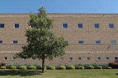 Gustavus Adolphus College (lars hammar) Tags: college gustavusadolphuscollege gustavus