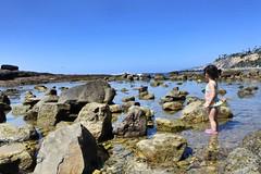 White Point Beach (mssophiele) Tags: coastal hiddengem ocean rocks tidepools losangelescounty sightseeing sampedro whitepointbeach toddlerfun pacific