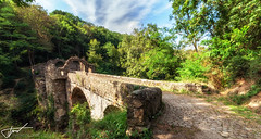 Pont du Diable (zqk09) Tags: france ariege tourisme canon paysage landscape nature green pont arbre foret tree forest ciel sky cloud nuage pierre rock love me chemin 1022 10mm midipyrénées icc occitanie