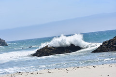 Pfeiffer Beach (nick.amoscato) Tags: ca california pfeiffer bigsur
