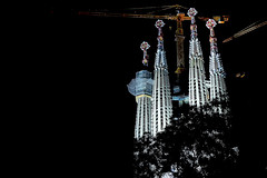 A La Sagrada Familia - A la nit (Fnikos) Tags: city sky gaudí antonigaudí lasagradafamilia construction building architecture modernism art sculpture temple faith tower basílica religion tree nature dark darkness night nightview nightshot outdoor