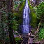 Marymere Falls Trail thumbnail