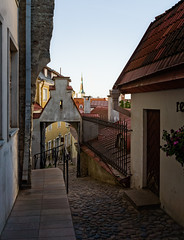 Lühike jalg leads to the Lower Town (Tiigra) Tags: tallinn harjucounty estonia ee 2018 architecture city fence gothic lattice oleviste passage portal rhythm road roof spire stairs tower arch