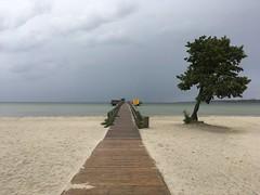 Horizont (TitusT1960) Tags: water clouds wolken badesteg steg holz tree baum sand holiday urlaub sky sea beach blau blue himmel meer strand öland schweden