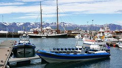 P1170661 (Tipfinder) Tags: iceland island reykjavik akureyri siglufjörður húsavík goðafoss goðafosswaterfall mývatn mývatnlake mývatnsee lakemývatn dimmuborgir reykjahlíð egilsstaðir seyðisfjörður eskifjörður reyðarfjörður höfn jökulsárlónglacier jökulsárlón fjallsárlón víkímýrdal hella selfoss selfosskirkja hellisheiðarvirkjun vikinmaritimemuseumreykjavik vikinmaritimemuseum thehúsavíkwhalemuseum whalemuseumhusavik whalemuseum thegeothermalenergyexhibition sagamuseum sagamuseumreykjavik theherringeramuseum theherringeramuseumsiglufjörður