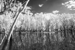Bundalong river flats, Victoria, Australia