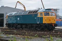 "British Rail Blue Class 47/8, 1733 (37190 ""Dalzell"") Tags: br britishrail railblue brush sulzer type4 duff spoon class47 class478 d1733 47853 47614 47141 lsl locomotiveserviceslimited dieseldepot crewe"