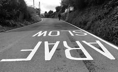 Mynd i fyny'r rhiw (Rhisiart Hincks) Tags: dringo hillside slope rhiw slow araf gwennhadu bw duagwyn wales cymru ceredigion yborth rathad bóthar hent road ffordd lôn