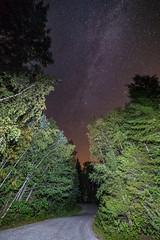 Night road (Arttu Uusitalo) Tags: night nightscape nightsky evening autumn fall woods forest road finland ostrobothnia korsholm raippaluoto replot landscape wideangle starry sky stars samyang 14mm canon eos 5d mkiv