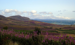 View from Struie hill