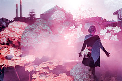 The fog clears and the dream ends (Hayden_Williams) Tags: mist fog doubleexposure multipleexposure purple lomo lomography lomochrome lomochromepurple dream dreamy dreamydoubleexposure purpledoubleexposure