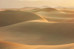 golden (Andy Kennelly) Tags: death valley sand dunes sunrise curves ripples shadows