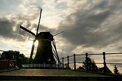 Sloten (Don Bello Photography) Tags: sommer holland niederlande 2018 sloten sleat windmill windmühle morgenlicht sonne wolken himmel himmelsbilder sky clouds acdsee panasonicfz1000 lumixfz1000 reinhardbellmann donbellophotography