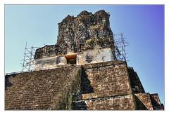 Tikal GCA - Temple II - Temple of the Mask 07 (Daniel Mennerich) Tags: tikal templeofthemask petén guatemala maya