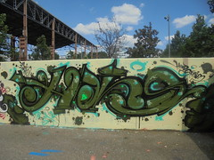 head stories (en-ri) Tags: hans verde azzurro nero arrow parco dora wall muro torino writing graffiti 2018