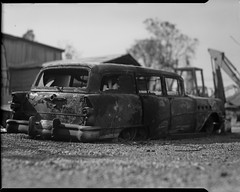 Carr fire aftermath on 4x5 film (Garrett Meyers) Tags: graflexseriesd4x5 garrettmeyers garrett meyers largeformat 4x5film 4x5 graflex graflex4x5 blackandwhitefilm film filmphotographer homedeveloped carrfire northerncalifornia burned burnt ash wildfire forestfire