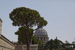 Rome (will668) Tags: rome italy sculpture art history historical eu europe travel tourism holiday roman