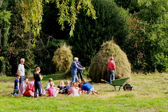 afwerking top (regionaal landschap Schelde-Durme) Tags: waasmunster kinderen pdpo lia natuurbeleving hooiland speelnatuur landschap landbouw biodiversiteit samenwerken