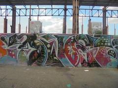 491 (en-ri) Tags: rinek faccina sob rosa verde bianco torino wall muro graffiti writing parco dora triste