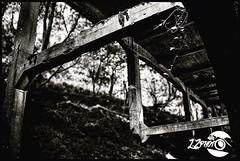 (L.Z photo) Tags: abandon architecture perspective noiretblanc blackandwhite urbex natur