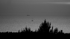 evening (Darek Drapala) Tags: evening sun sky silhouette sunset skyskape sea seashore seascape sunshine shadow space panasonic poland polska panasonicg5 bw blackwhite blackandwhite baltic lumix light landscape nature ship