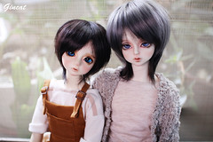 IMG_4982 (まお) Tags: bory luts soom goss