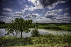 20180902142705 (Henk Lamers) Tags: gelderland neerijnen netherlands