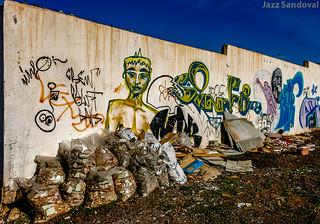 Pintadas y escombros. Arrecife, Lanzarote, febrero 2007.